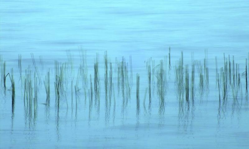 Und der Wind flüstert mir zu_and the wind whispers to me