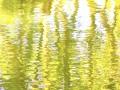 Tanz der Spiegelungen_danse of reflection
